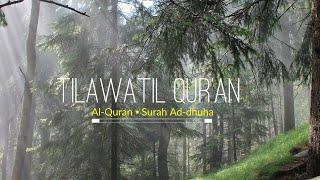 مشاهدة وتحميل فيديو Surah Ad Duha 8D Audio Recited By Sheikh