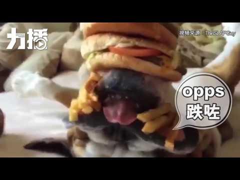 「疊漢堡」「砌薯條」仍叫不醒