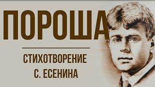 «Пороша» С. Есенин. Анализ стихотворения фото