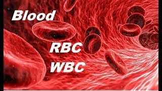 CH05-BODY FLUIDS & CIRCULATION IN ANIMALS-PART01-BLOOD