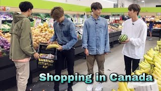 BTS Holiday in Canada // Funny hindi dubbing //Part-2 //run ep 70