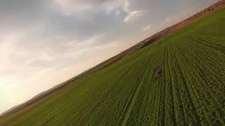 DJI FPV Drone - Flight Over Fields - Sport Mode 4K