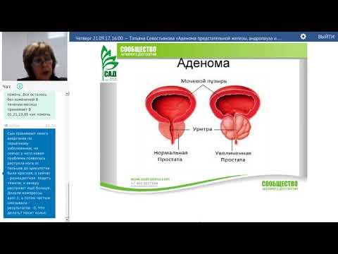 Объем предстательной железы выше нормы
