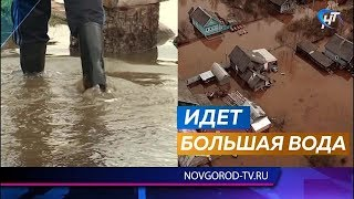 Новгородскую область весной ожидает сильный паводок