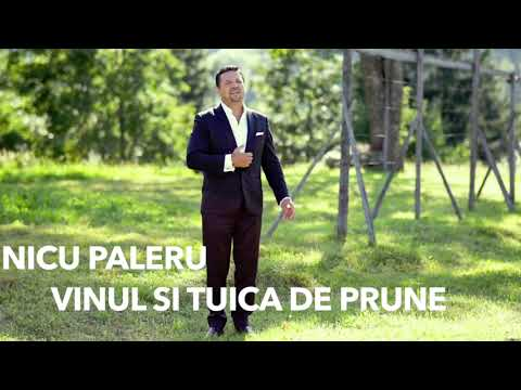 Nicu Paleru – Vinul si tuica de prune Video