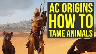 Assassin's Creed Origins ANIMAL TAMING Gameplay (AC Origins Gameplay - Assassin's Creed Origins tips