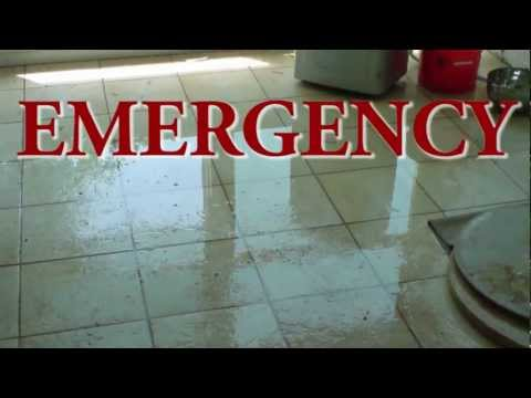 Emergency Water Removal Services for Sarasota, Florida and Mold Removal from Water Damage