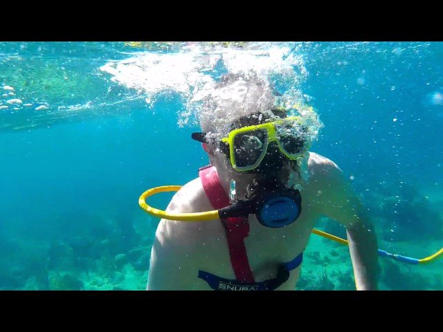 Nassau Bahamas Snuba Diving Coral Reef from Carnival Cruise
