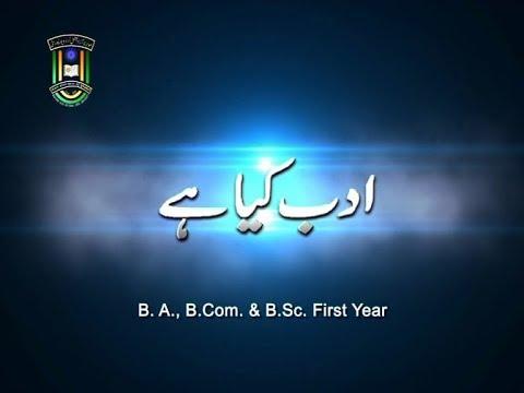 IMC, MANUU_Adab Kiya Hai? (Interview)_B.A_Urdu_1st Year
