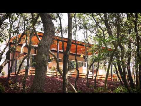 Stacaravan Villa Exclusive 50 m²