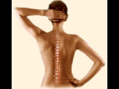 Коленный сустав строение движения кровоснабжение иннервация