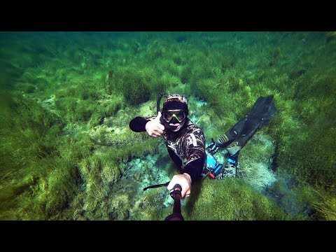 Чистейшее таёжное озеро. Ныряю, снимаю подводный мир. Прозрак 30+