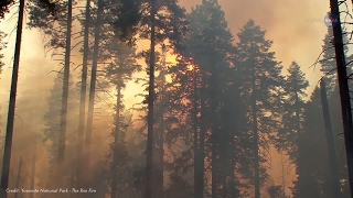 Wildland Fire -Taking the Wild out of Wildfire - Science at NASA