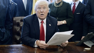 Leaked document at odds with Trump