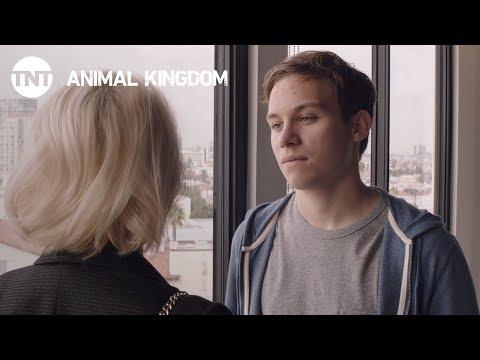 Animal Kingdom 2.04 (Preview)