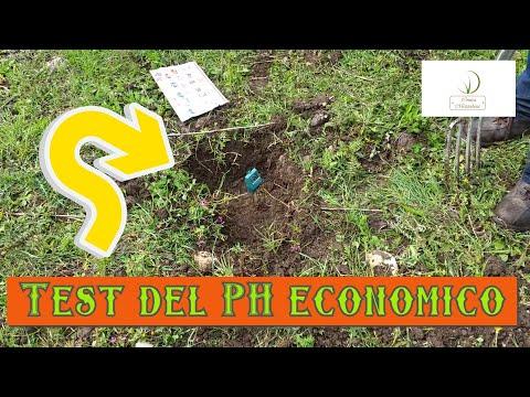 Analisi del suolo-test del PH