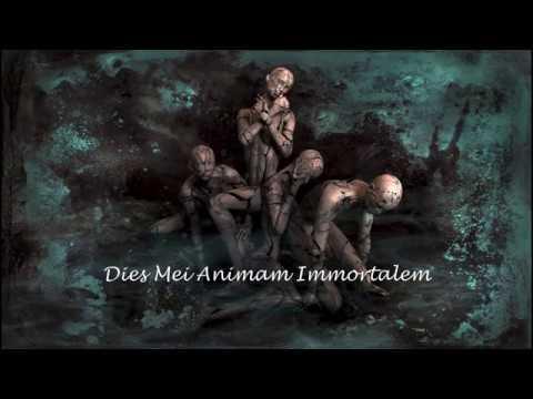 Dies Mei Animam Immortalem
