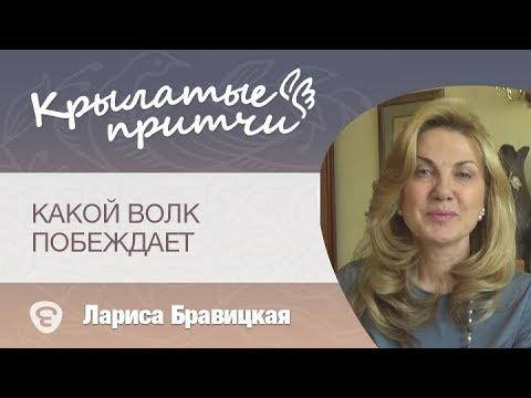 https://youtu.be/YpZzaFiGfPs