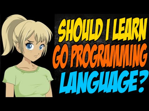 Should I Learn Go Programming Language?
