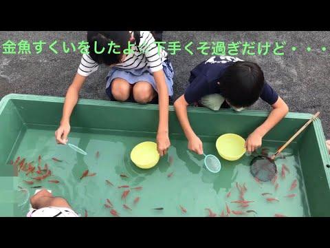 祭りの金魚すくいに夢中のJSを、上からカメラで・・!!
