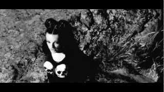 Remix Apocalyptica & Nina HAGEN - Seemann Feat. Sébastien MARTI (Vocal Short Version HD)
