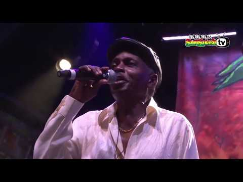 THE PIONEERS ft LLOYD PARKS & We The People Band live @ Main Stage 2015