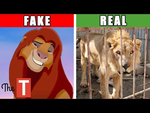 The Disturbing Real Story Behind The Lion King