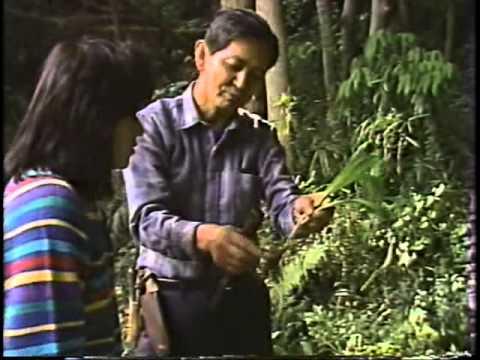 ふるさと相模原 1986年07月号
