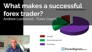 What makes a successful forex trader?