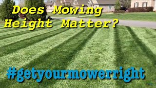 How High Do I Cut My Grass?