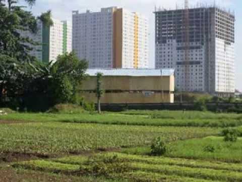 Pertanian Perkotaan