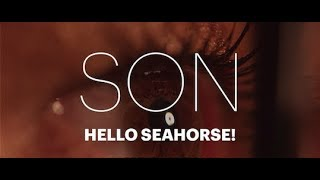 Hello Seahorse!   SON (Video Oficial)