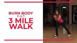 Burn Body Fat 3 Mile | Leslie Sansone's Walk At Home