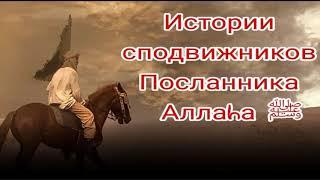 Истории сподвижников Пророка Мухаммадаﷺ. Асма бинт Абу-Бакр (да будет доволен ими Аллаh).