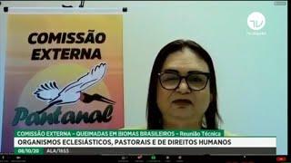 Queimadas - Comissão debate queimadas em biomas brasileiros - 08/10/2020 09:30