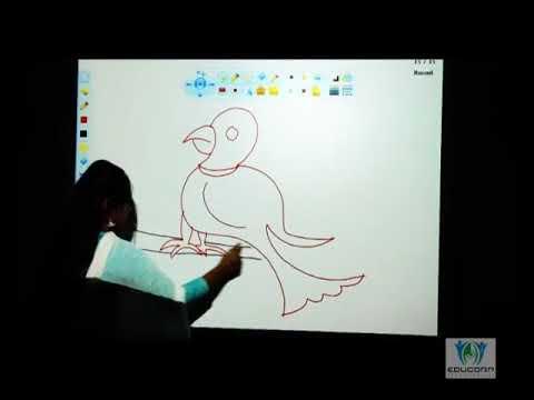 Educorp Interactive Board