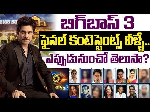 Bigg Boss 3 Telugu Contestant List