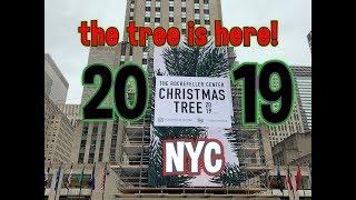 2019 ROCKEFELLER CENTER CHRISTMAS TREE - New York City