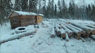 Работаем в лесу, трудовые будни, ремонт техники, трелёвка Т-40