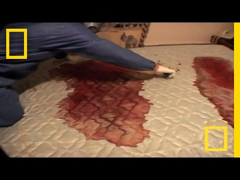 Crime Scene Cleaners | Real Life CSI