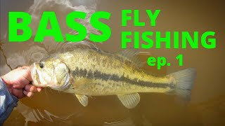 BASS FLY FISHING ep.1 (how to)