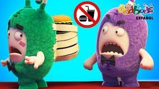 Nuevo Fiasco de Comida - Oddbods   Caricaturas Graciosas Para Niños