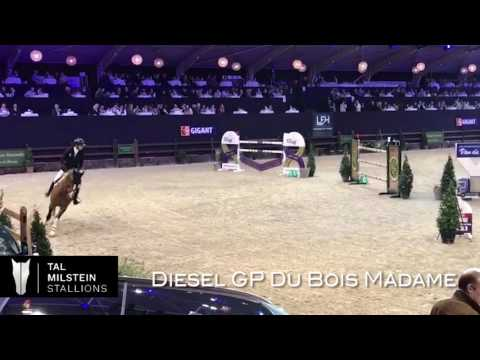 Diesel GP Du Bois Madame