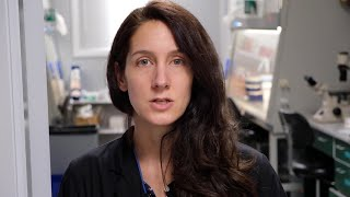 Newswise:Video Embedded nature-study-identifies-21-existing-drugs-that-could-treat-covid-19