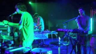 animal collective grace