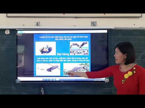 Luyện từ và câu lớp 2: MRVT: Từ ngữ về loài chim. Dấu chấm, dấu phẩy - Nguyễn Thị Diệu Thúy- Trường TH&THCS Thái Học