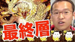 【パズドラ】白蛇の地下迷宮 10層にラストチャレンジ!!