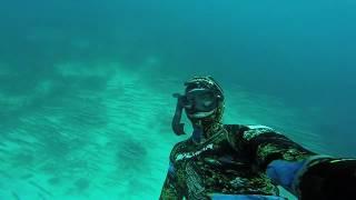Trailer Spearfishing Guadeloupe #HERO