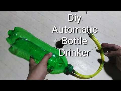 , title : 'RABBIT AUTOMATIC WATER SYSTEM 2020 | drinker for rabbit | RABBIT PHILIPPINE | diy cheap | easy to do