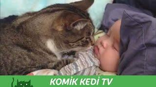 Bebekleri Koruyan Kedi ve Köpekler   Komik Kediler